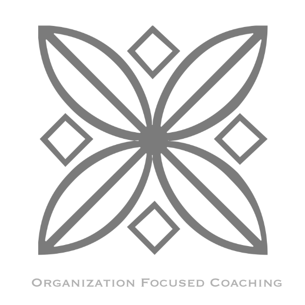 organization focused coaching